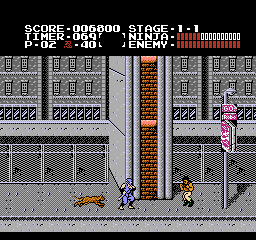 Ninja Gaiden / Shadow Warriors - updated