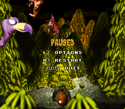 Donkey Kong Country: Boss Blitz